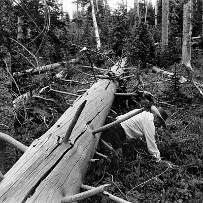 Alex Harris- Jacobo Romero, Kit Carson National Forest Above Pot Creek, New Mexico, 1979; River of Traps